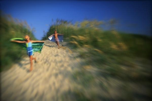 Photograph Chip Henderson Dune Runners on One Eyeland