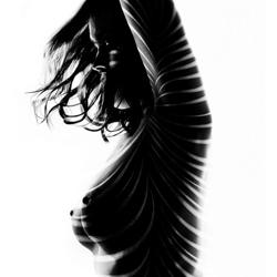 stripes & curves-Kristian Liebrand-finalist-black_and_white-1292