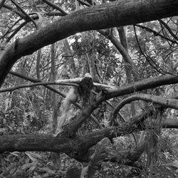 Everglades-Steve Lash-bronze-black_and_white-1147