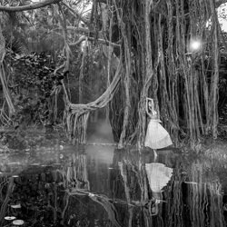 Into the Wild 2-George Kamper-finalist-black_and_white-1259