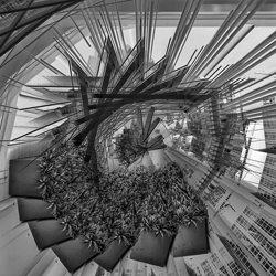 Die Vision.-Steve Turner-Finalist-black_and_white-2676