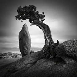 Balance Rock-Jan Bell-silver-black_and_white-2794