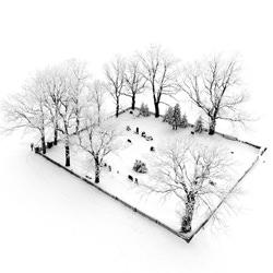 Eternity-Tomas Neuwirth-finalist-black_and_white-2692