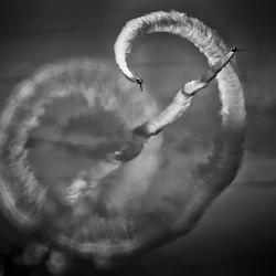 Acrobatic Flight #1-Cain Shimizu-silver-black_and_white-4546