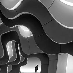 Curves-Marcel Van Balken-silver-black_and_white-6586