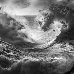 Horsehade Wave-Paolo Lazzarotti-silver-black_and_white-6588
