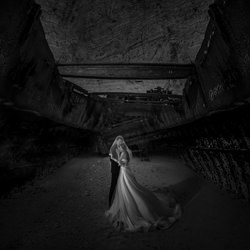 Shipwreck_love-Eldon Lau-finalist-black_and_white-6450