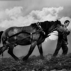 Hard work-Vladimir Karamazov-finalist-black_and_white-6507