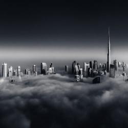 The Fog-Florian Kriechbaumer-silver-black_and_white-6615