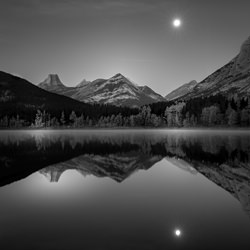 Natures perfection-Kathryn M. Audet-bronze-black_and_white-6424