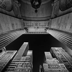 NY LIBRARY-Ana Amtmann-silver-black_and_white-6616