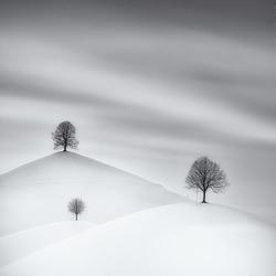 drumlins in winter-Cedric Tamani-silver-black_and_white-6617