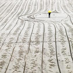 Paths-Magda Fulger-finalist-fine_art-2969