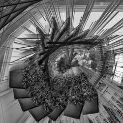 Die Vision.-Steve Turner-Finalist-fine_art-2946