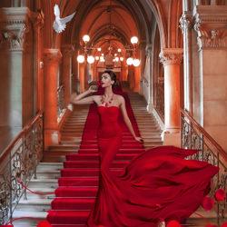 Lady In Red-Priscilla Vezzit Ferreira-finalist-fine_art-4158