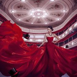 Lady In Red-Priscilla Vezzit Ferreira-finalist-fine_art-4162