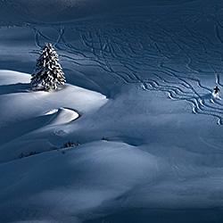 Passing by-Peter Svoboda-silver-landscape-583