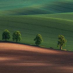 Alley-Peter Svoboda-silver-landscape-584