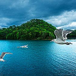 Flying over the lake-Keiichiro Matsuo-finalist-landscape-464