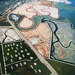 Salt Pond-Dolly Kabaria-finalist-landscape-470