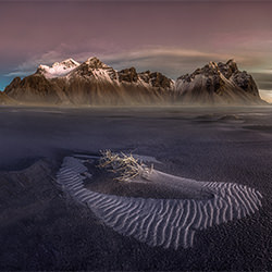 The last island-Peter Svoboda-bronze-landscape-2118