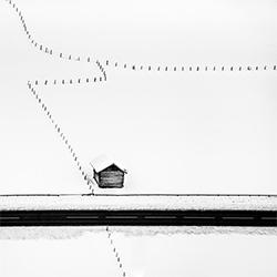 Isolated-Peter Svoboda-silver-landscape-2421
