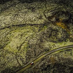 lost in the green-Patrick Curtet-bronze-landscape-2158
