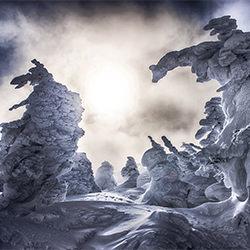 Ice monster-Kazuaki Koseki-bronze-landscape-2159