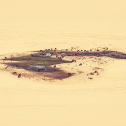 Oasis-Eldon Lau-silver-landscape-3701
