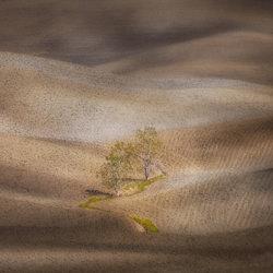 Shades of spring-Peter Svoboda-finalist-landscape-3470