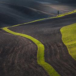 What is kept untouched-Peter Svoboda-finalist-landscape-3471