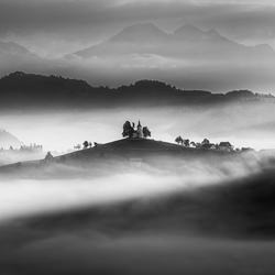 Stream of light-Peter Svoboda-finalist-landscape-3473