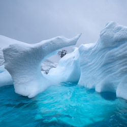 Iceberg Shells-Thomas Vijayan-finalist-landscape-3535
