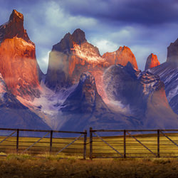 Las Torres-Francisco Negroni-bronze-landscape-3429