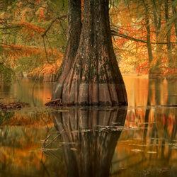 Bald Forest Of Autumn-Virgil Reglioni-bronze-landscape-5068