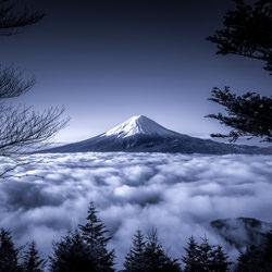 Beyond the Forest-Takashi-bronze-landscape-5064