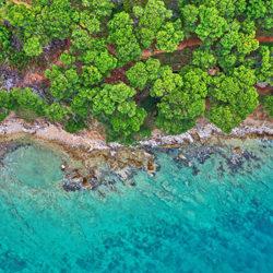 Coast-Tomas Neuwirth-finalist-landscape-5216
