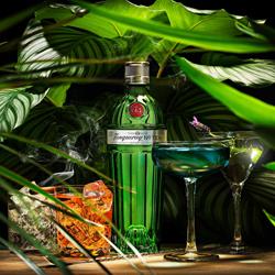 Tanqueray Tropical-Andrea Sudati-silver-still_life-5649