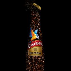 Kingfisher\'s Dive-Gaurav Kumar-bronze-still_life-5498