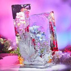 Blumen im Eis-Cheuk Lun Lo-Finalist-Stillleben 5555
