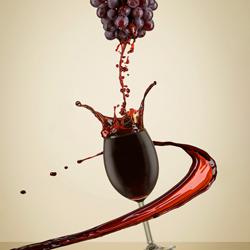Making wine-Marc Sabat-finalist-still_life-5546