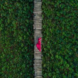 Heart bridge-Eldon Lau-gold-wedding-2062