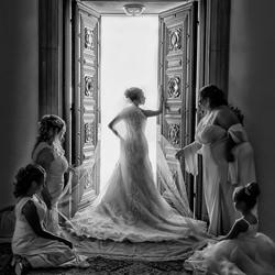 Royal Maids-Rachel Leintz-finalist-wedding-3235