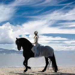 bride with horse-Spyros Mz-finalist-wedding-4772