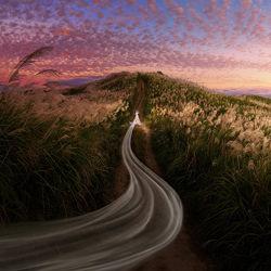 The Trail of Wavy Veil-Joe Lai-bronze-wedding-4708