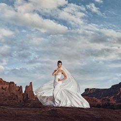 Monumental Beauty-Gary Evans-bronze-wedding-4717