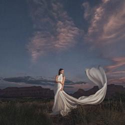 Desert Twilight-Gary Evans-bronze-wedding-4719