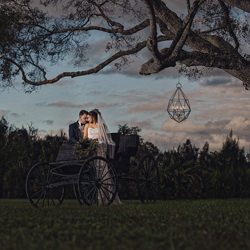 Love under the tree-Deivis Archbold-bronze-wedding-6137