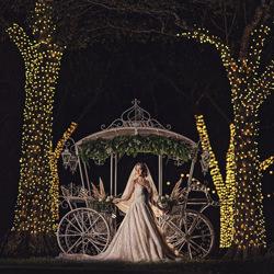 Merry Merry-Deivis Archbold-finalist-wedding-6257
