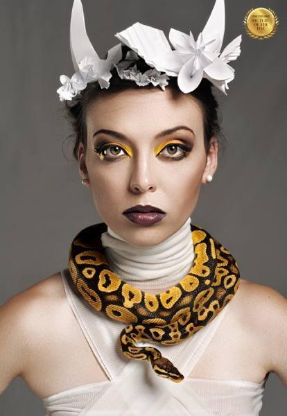 Photograph Pierre Venter Snake on One Eyeland